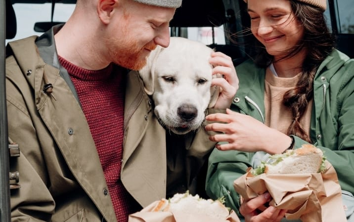 a couple eats lunch as their dog looks on