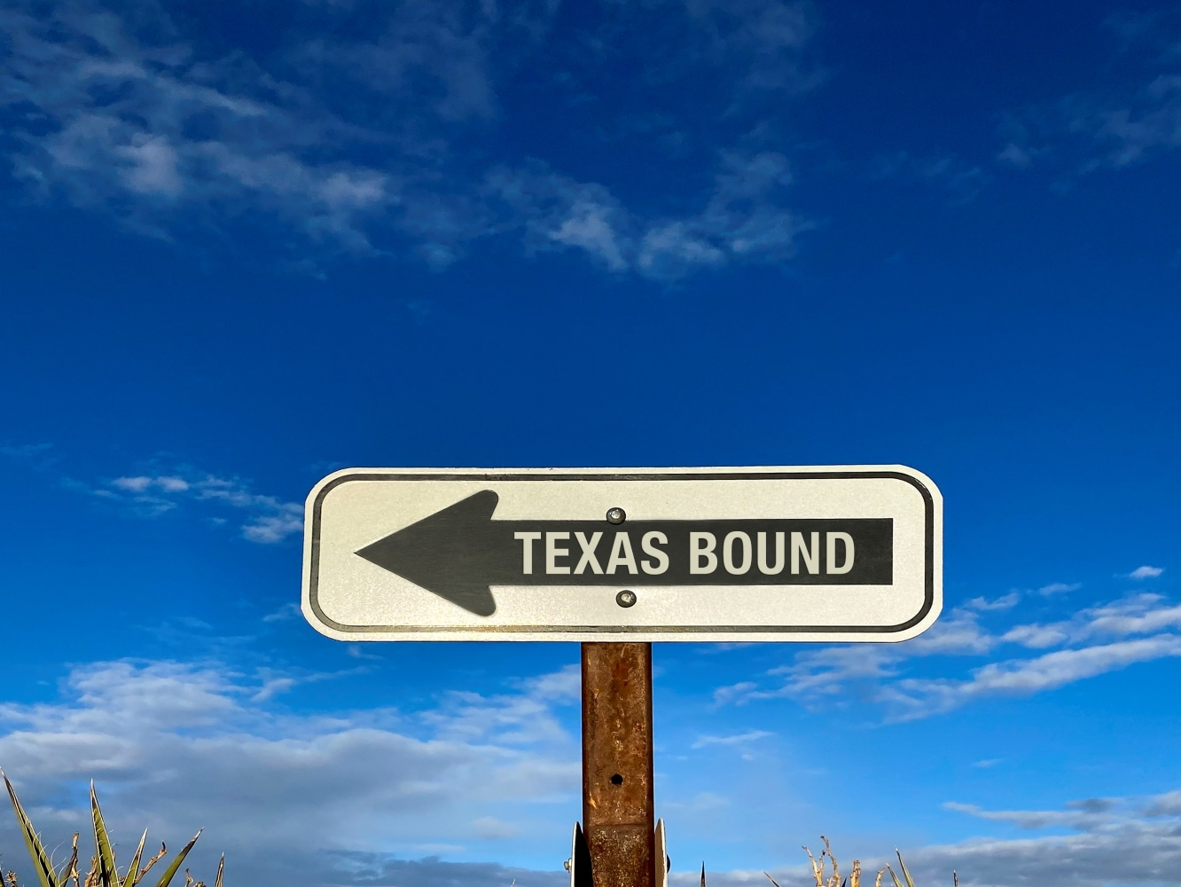 Texas bound road sign